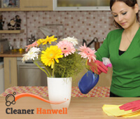 Domestic Cleaner Hanwell