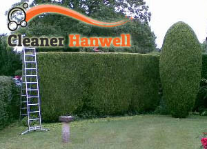 Hedge Maintenance Hanwell